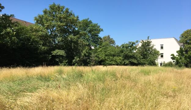 Foto aus dem Park des ehemaligen Paulusheims