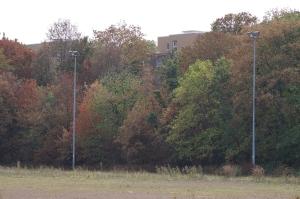 Foto von Randbebauung im Südwesten des verlassenen Sportplatzes Vogelsang